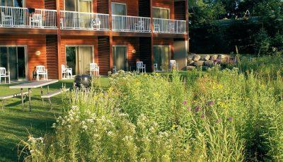 Rain Garden at the Lodge on Lake Detroit